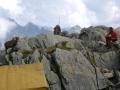 41_Animali_del_trekking